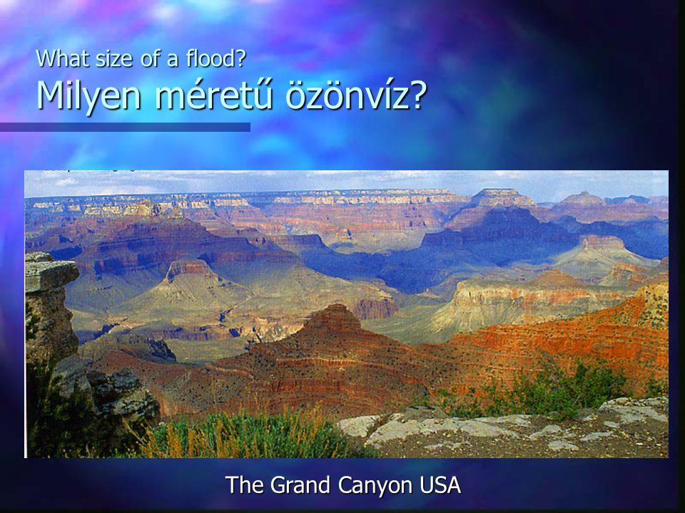What size of a flood Milyen méretű özönvíz