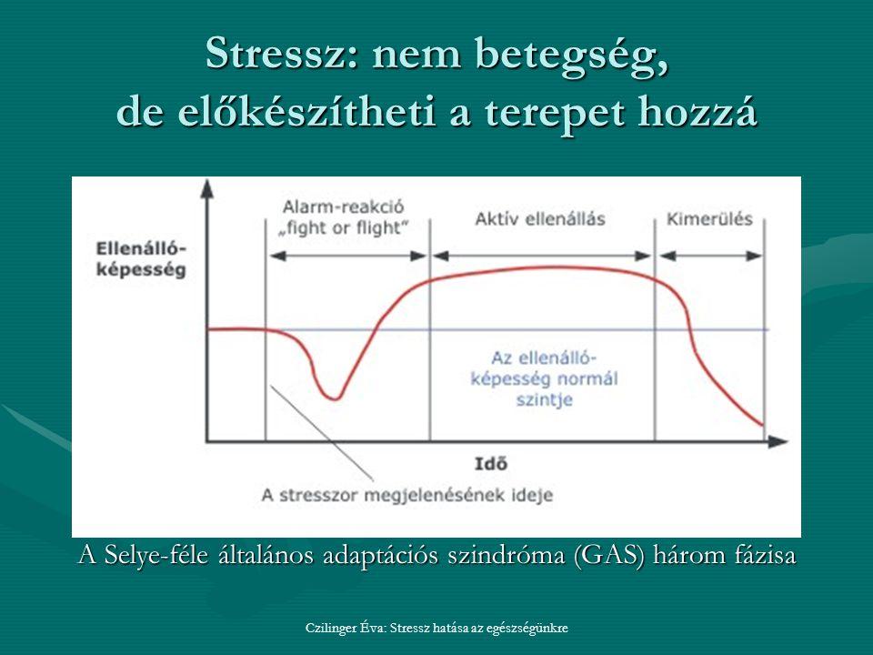 Stressz: nem betegség, de előkészítheti a terepet hozzá