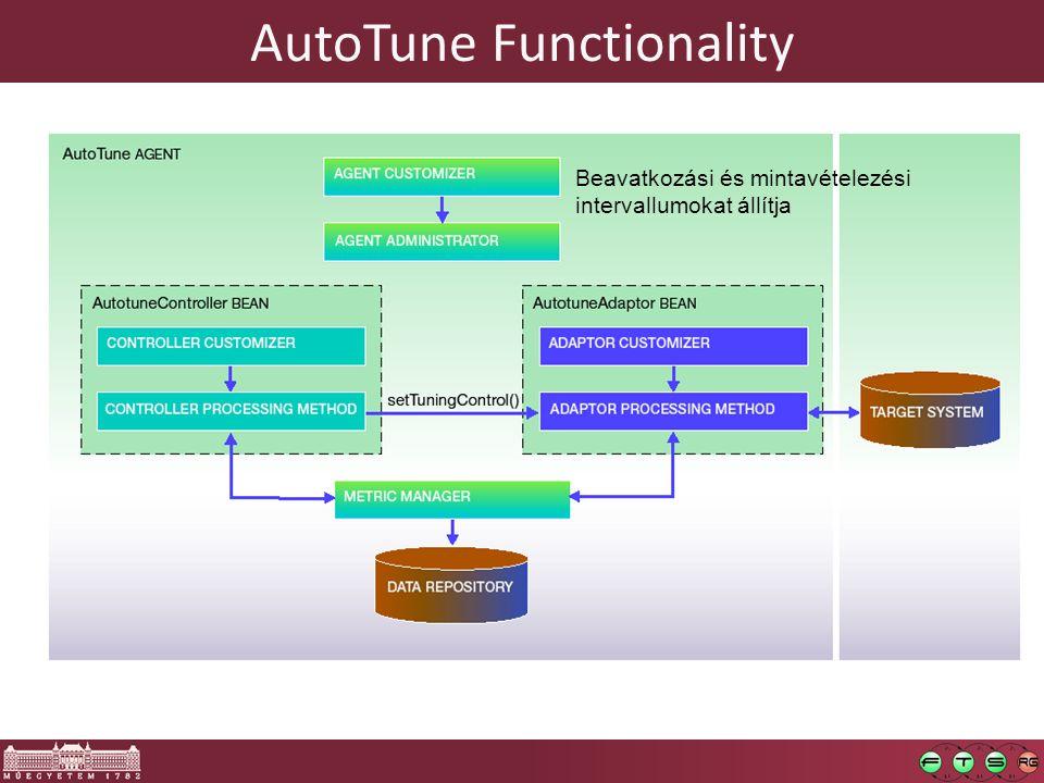 AutoTune Functionality