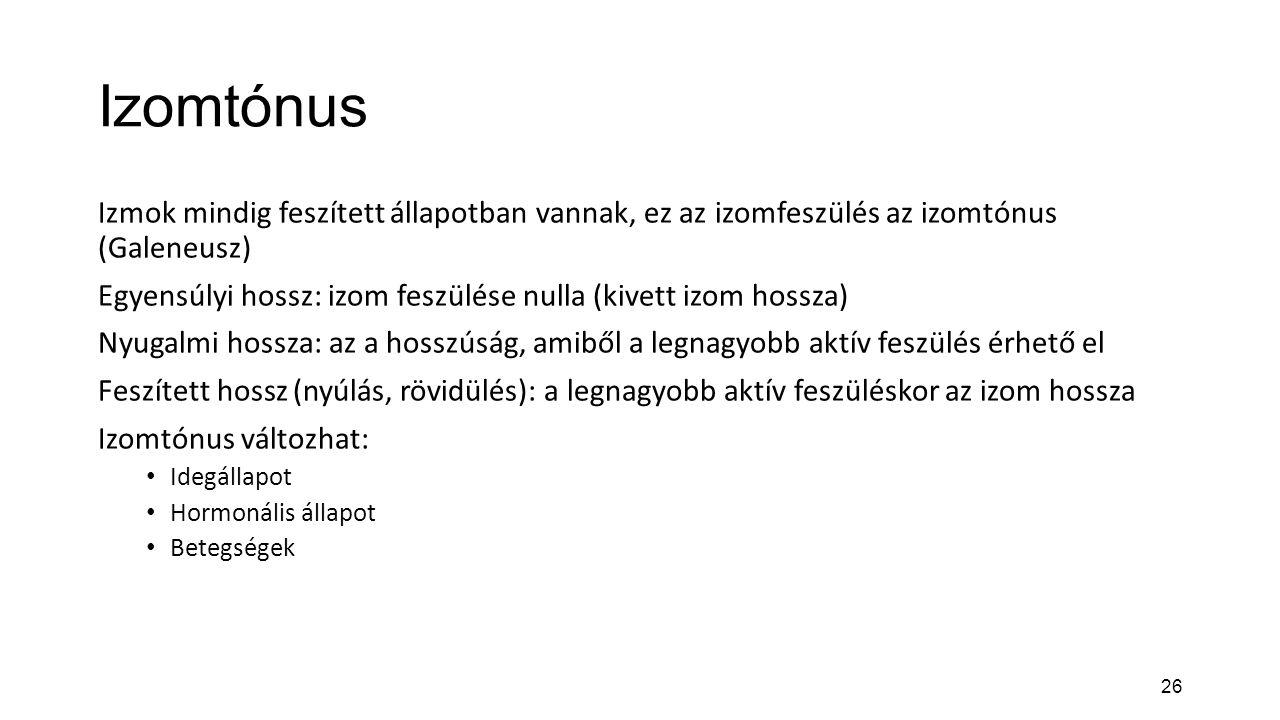 Izomtónus Izmok mindig feszített állapotban vannak, ez az izomfeszülés az izomtónus (Galeneusz)