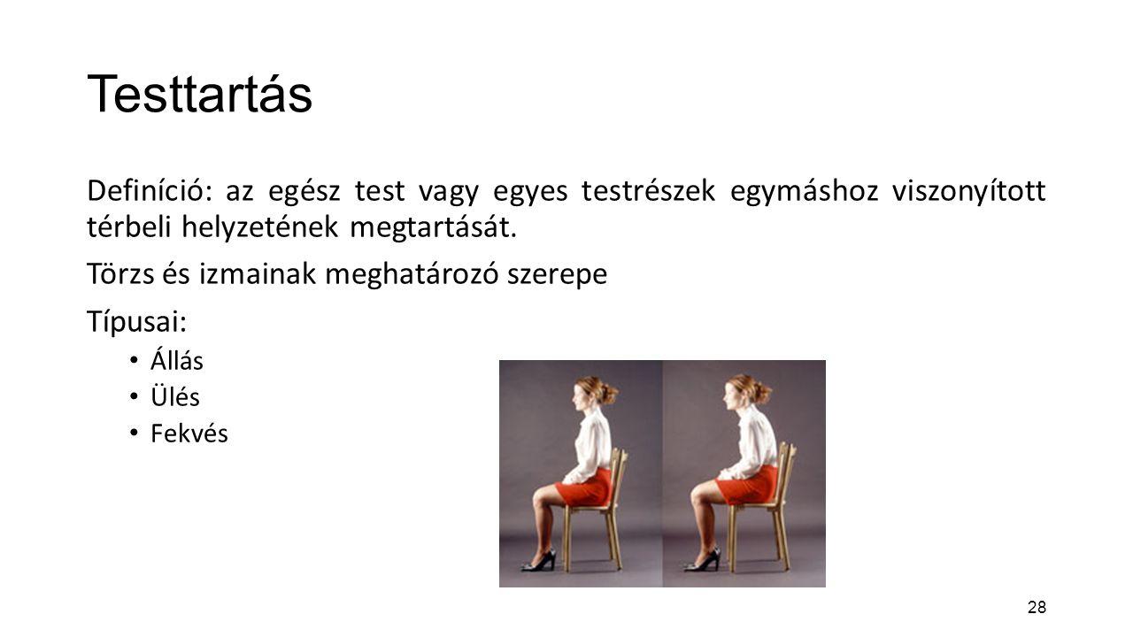 Testtartás Definíció: az egész test vagy egyes testrészek egymáshoz viszonyított térbeli helyzetének megtartását.