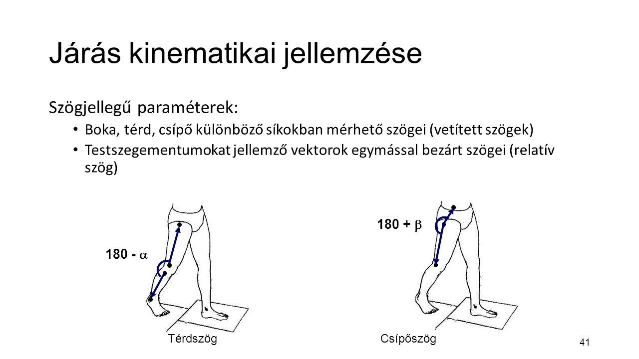 Járás kinematikai jellemzése