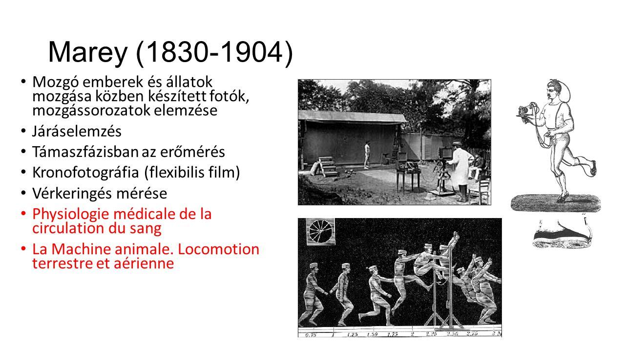 Marey (1830-1904) Mozgó emberek és állatok mozgása közben készített fotók, mozgássorozatok elemzése.