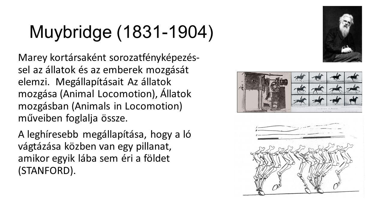Muybridge (1831-1904)