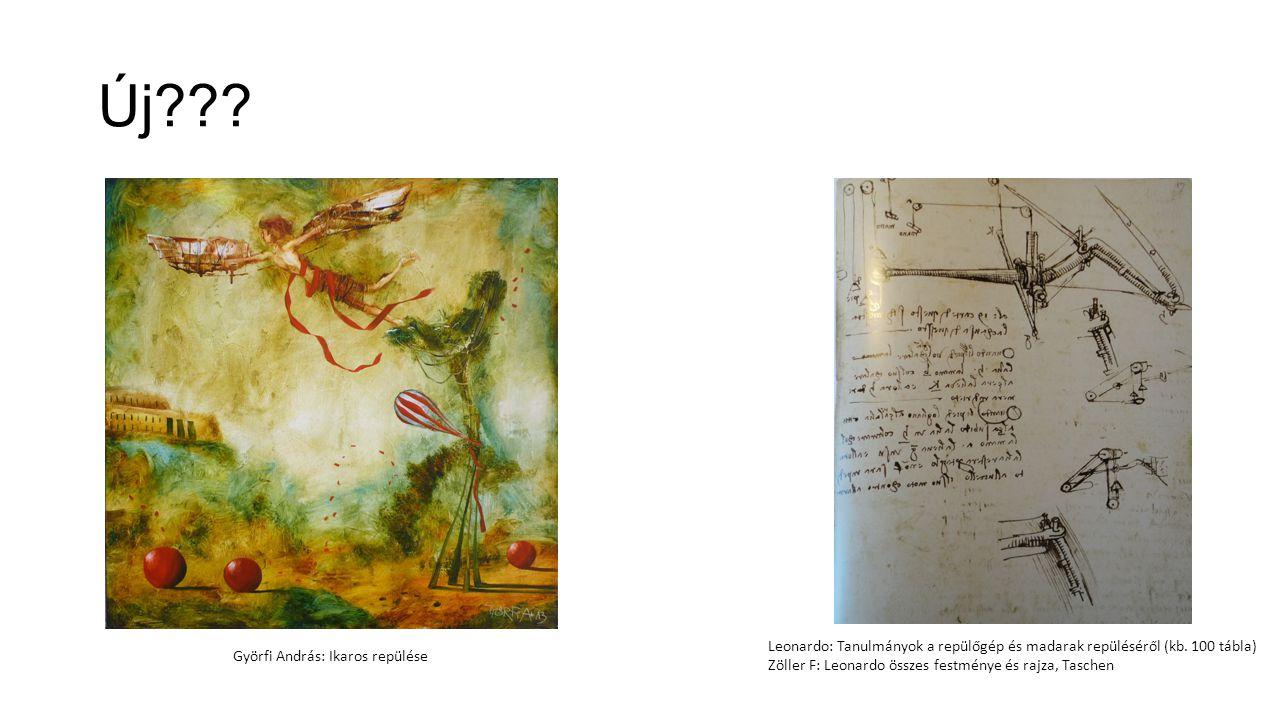 Új Leonardo: Tanulmányok a repülőgép és madarak repüléséről (kb. 100 tábla) Zöller F: Leonardo összes festménye és rajza, Taschen.