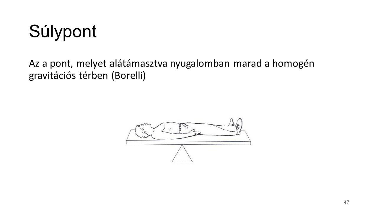Súlypont Az a pont, melyet alátámasztva nyugalomban marad a homogén gravitációs térben (Borelli) ábra.