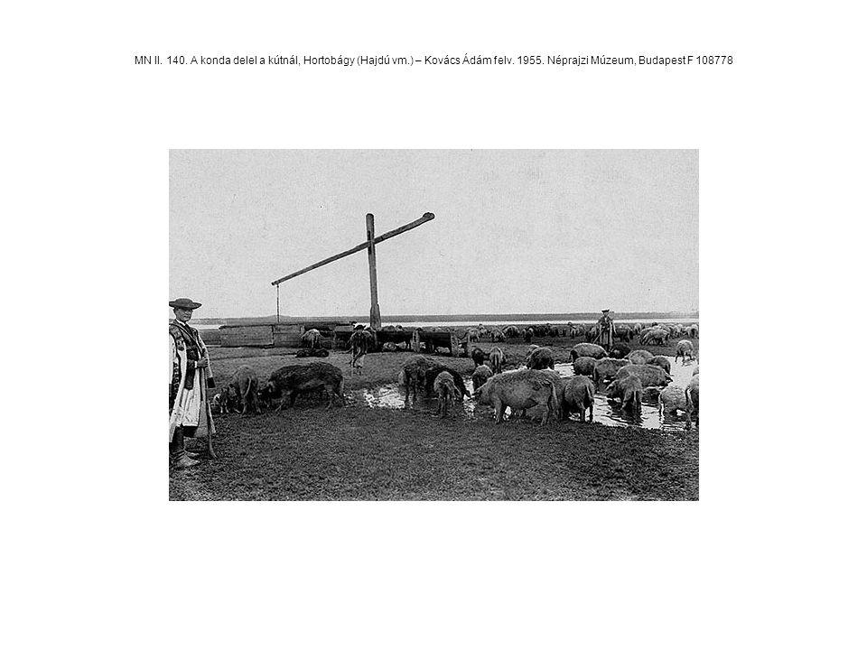 MN II. 140. A konda delel a kútnál, Hortobágy (Hajdú vm