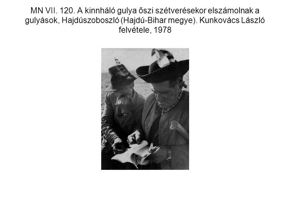 MN VII. 120.