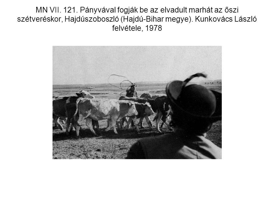 MN VII. 121.