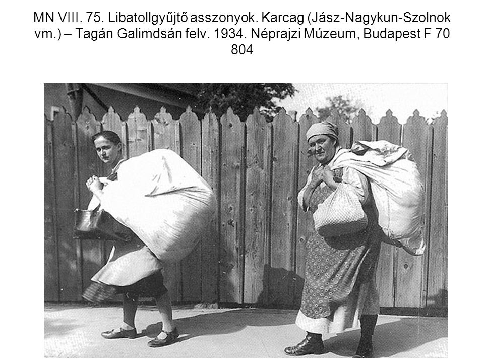 MN VIII. 75. Libatollgyűjtő asszonyok. Karcag (Jász-Nagykun-Szolnok vm