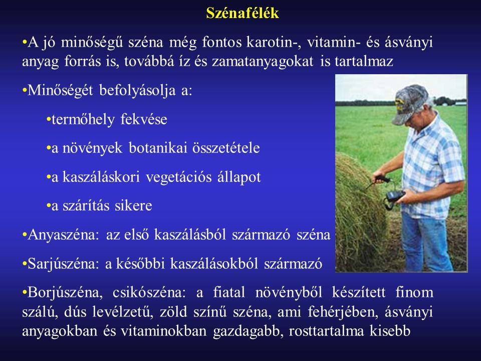 Szénafélék A jó minőségű széna még fontos karotin-, vitamin- és ásványi anyag forrás is, továbbá íz és zamatanyagokat is tartalmaz.
