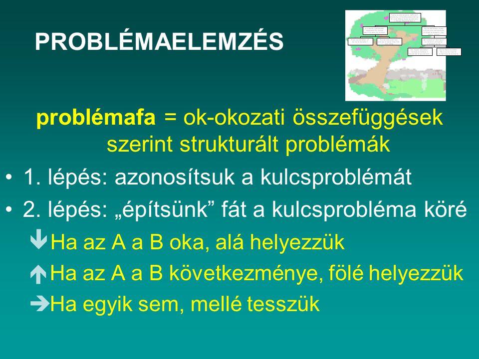 problémafa = ok-okozati összefüggések szerint strukturált problémák