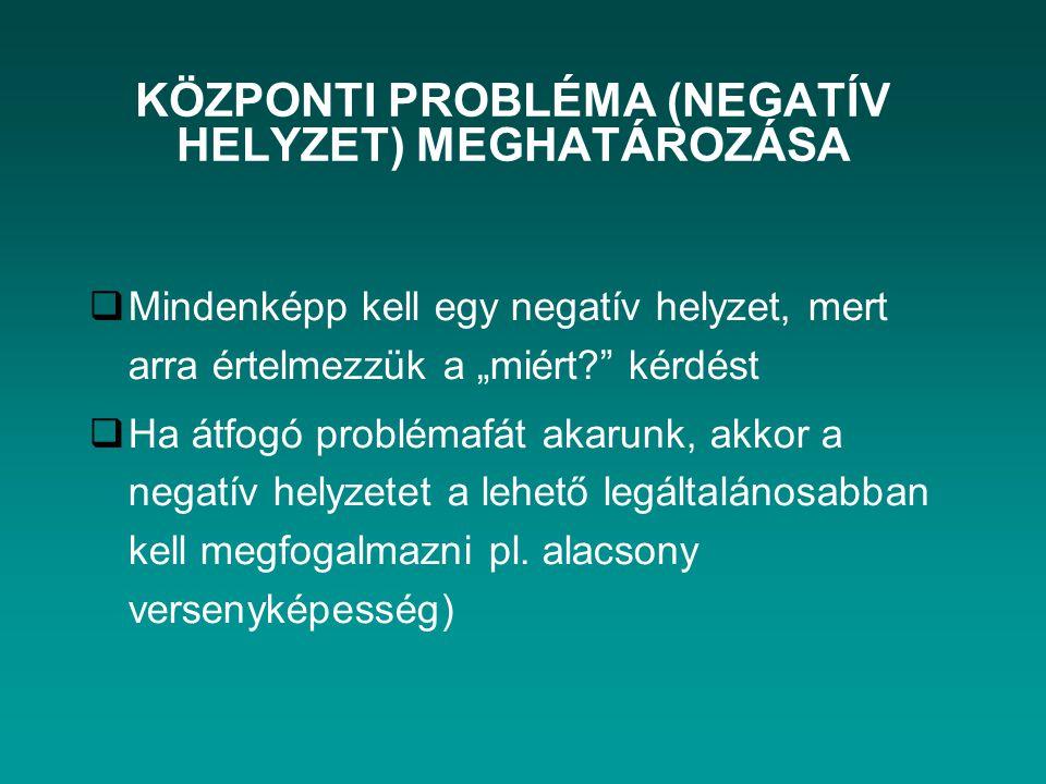 KÖZPONTI PROBLÉMA (NEGATÍV HELYZET) MEGHATÁROZÁSA