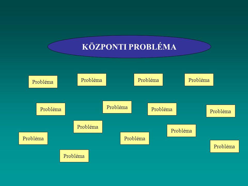 KÖZPONTI PROBLÉMA Probléma Probléma Probléma Probléma Probléma