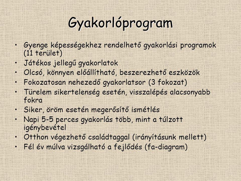 Gyakorlóprogram Gyenge képességekhez rendelhető gyakorlási programok (11 terület) Játékos jellegű gyakorlatok.