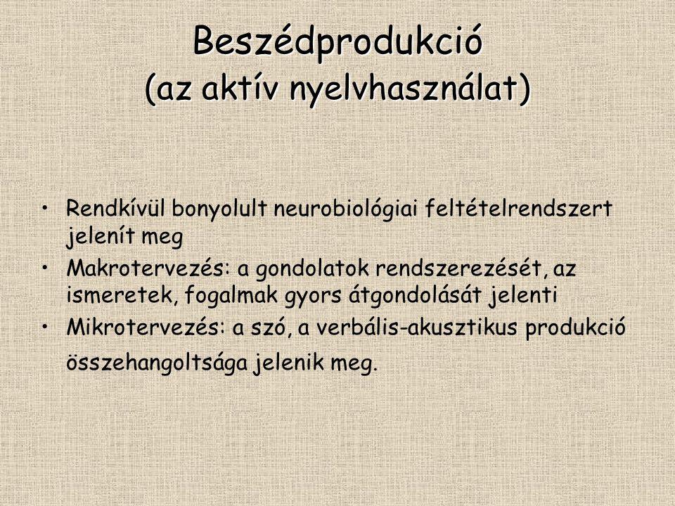 Beszédprodukció (az aktív nyelvhasználat)