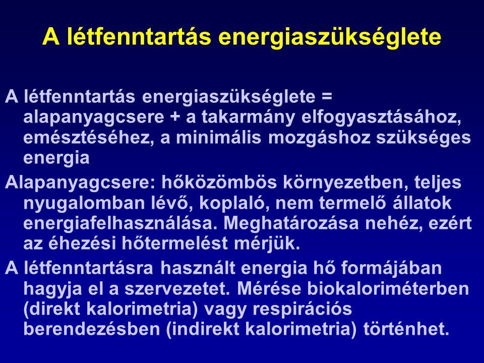 A létfenntartás energiaszükséglete