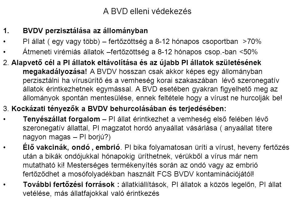 A BVD elleni védekezés BVDV perzisztálása az állományban