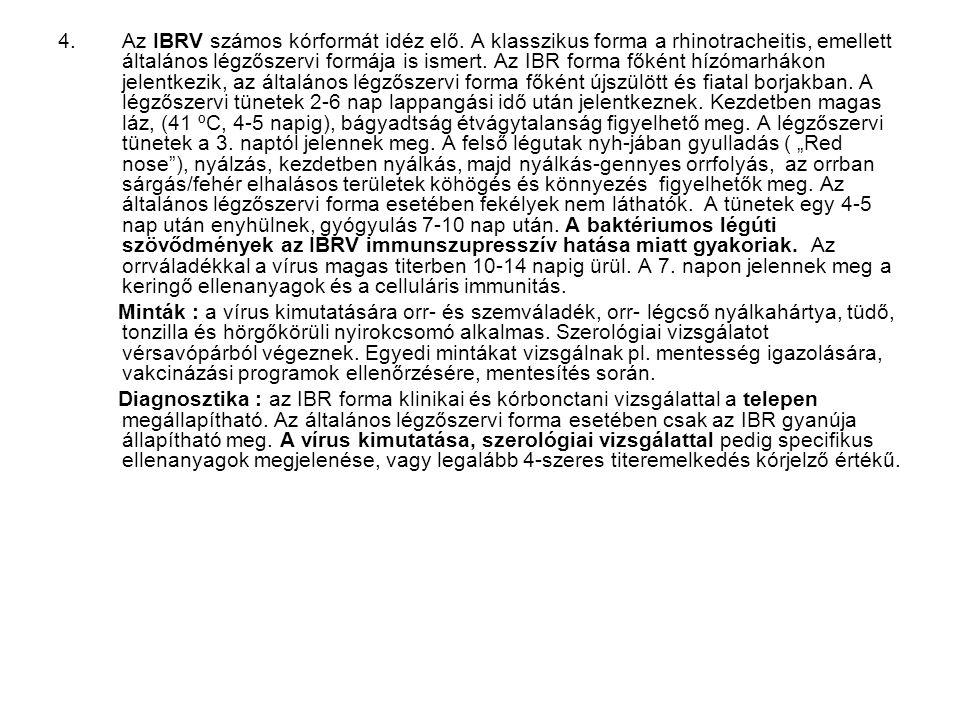 Az IBRV számos kórformát idéz elő