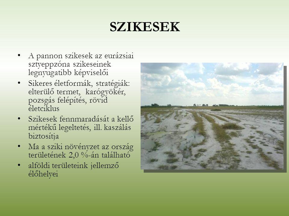 SZIKESEK A pannon szikesek az eurázsiai sztyeppzóna szikeseinek legnyugatibb képviselői.
