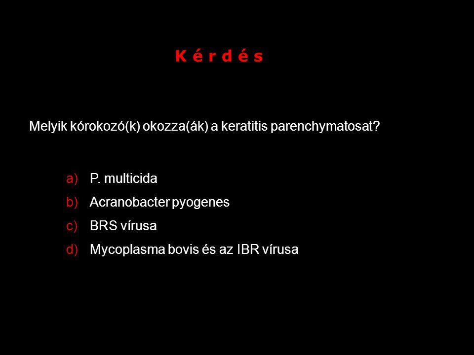 K é r d é s Melyik kórokozó(k) okozza(ák) a keratitis parenchymatosat