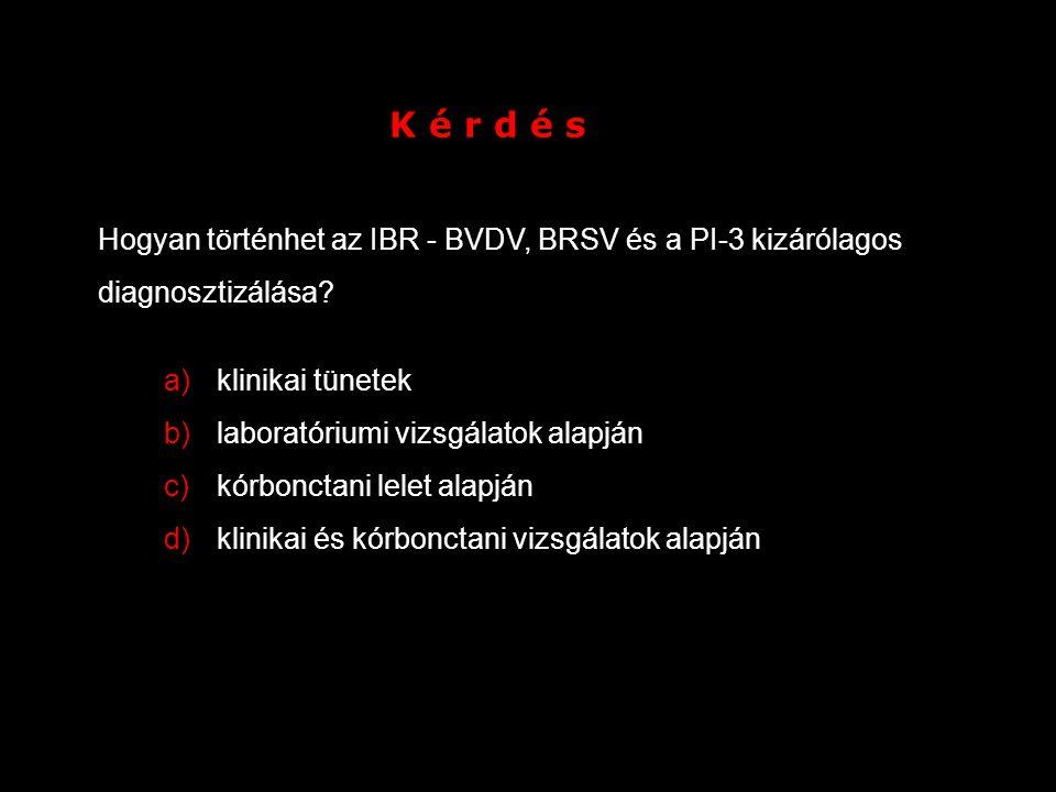 K é r d é s Hogyan történhet az IBR - BVDV, BRSV és a PI-3 kizárólagos diagnosztizálása klinikai tünetek.