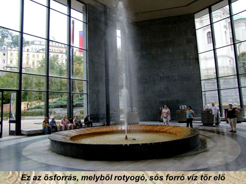 Ez az ősforrás, melyből rotyogó, sós forró víz tör elő