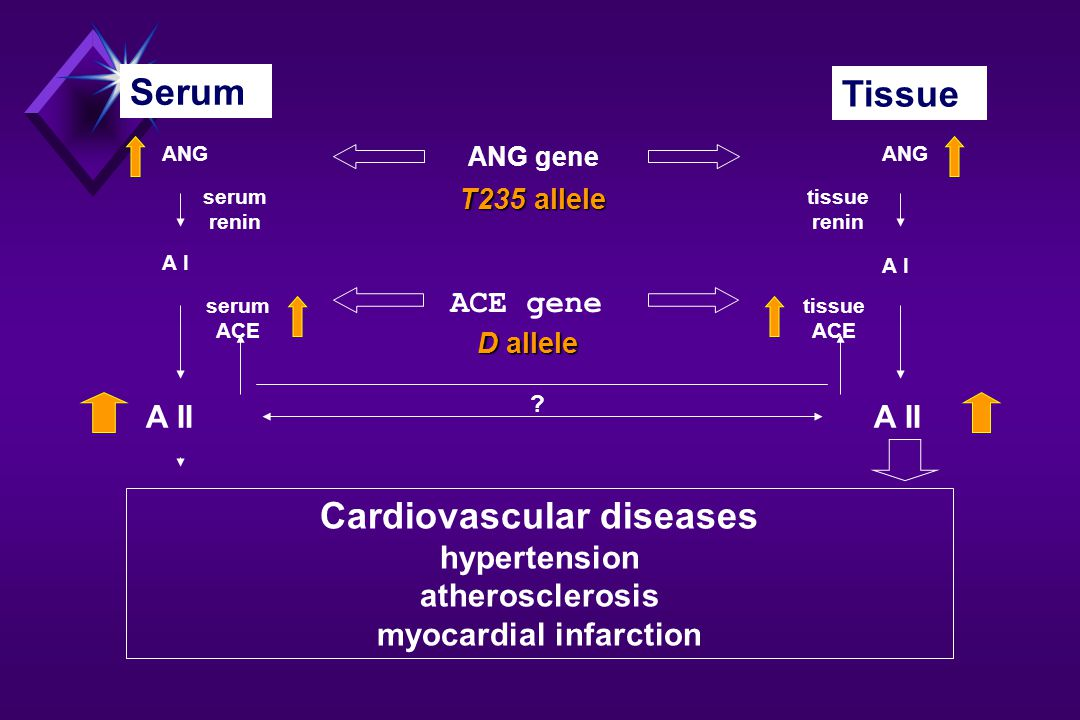 Cardiovascular diseases myocardial infarction