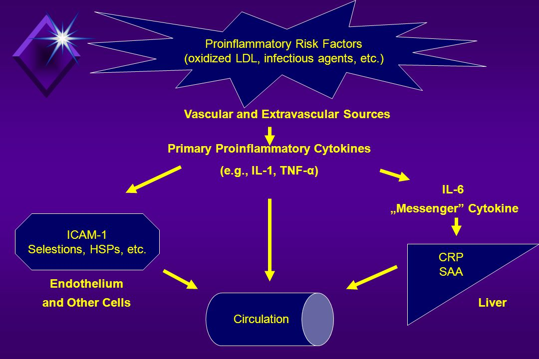 Vascular and Extravascular Sources Primary Proinflammatory Cytokines
