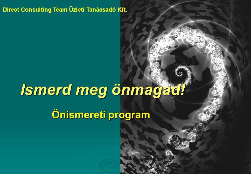 Direct Consulting Team Üzleti Tanácsadó Kft.