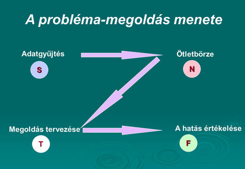 A probléma-megoldás menete