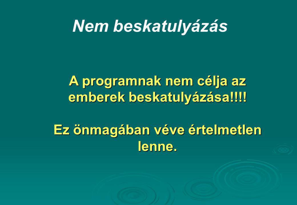 Nem beskatulyázás A programnak nem célja az emberek beskatulyázása!!!!