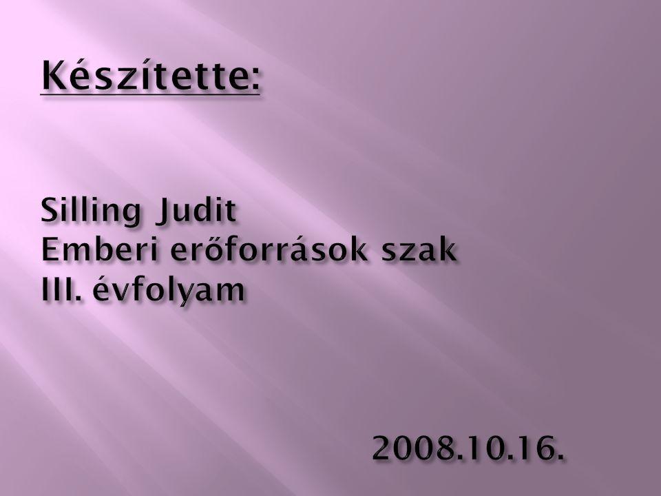 Készítette: Silling Judit Emberi erőforrások szak III. évfolyam. 2008