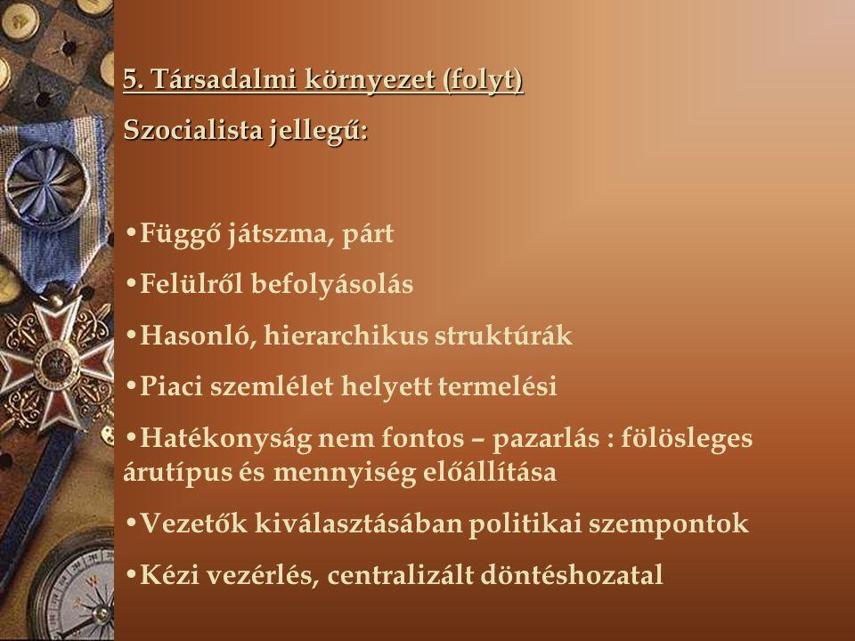 5. Társadalmi környezet (folyt)