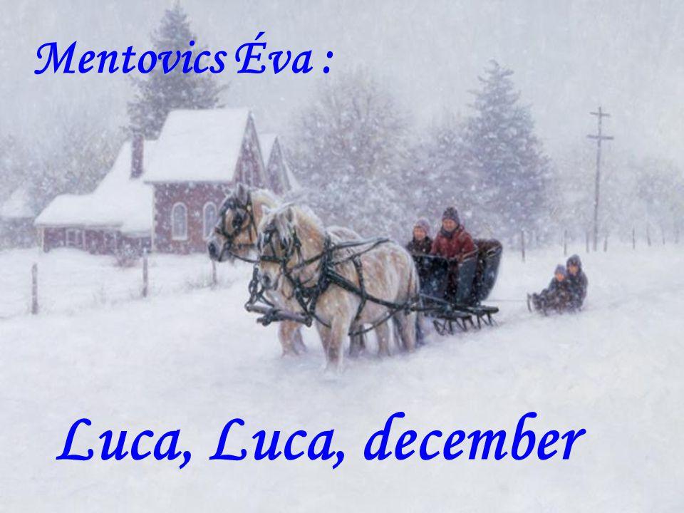 Mentovics Éva : Luca, Luca, december