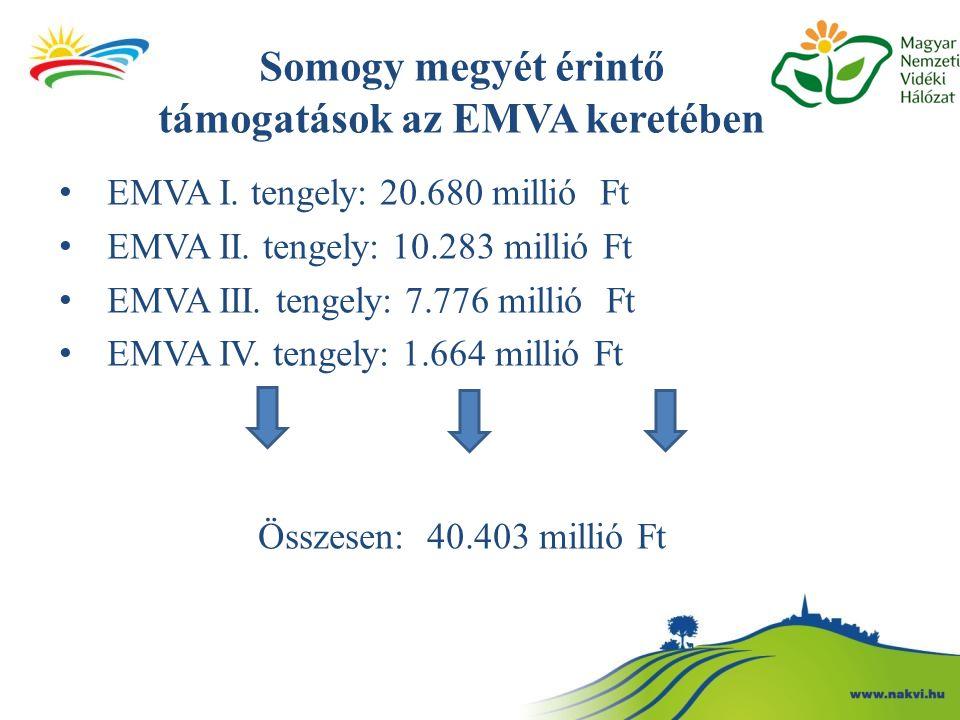 Somogy megyét érintő támogatások az EMVA keretében