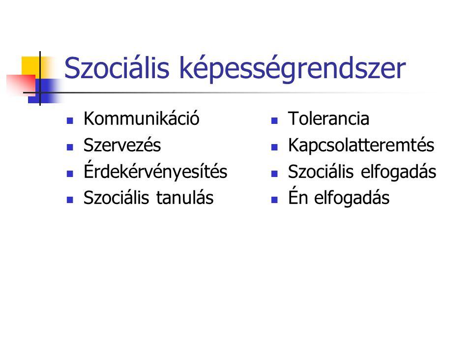 Szociális képességrendszer