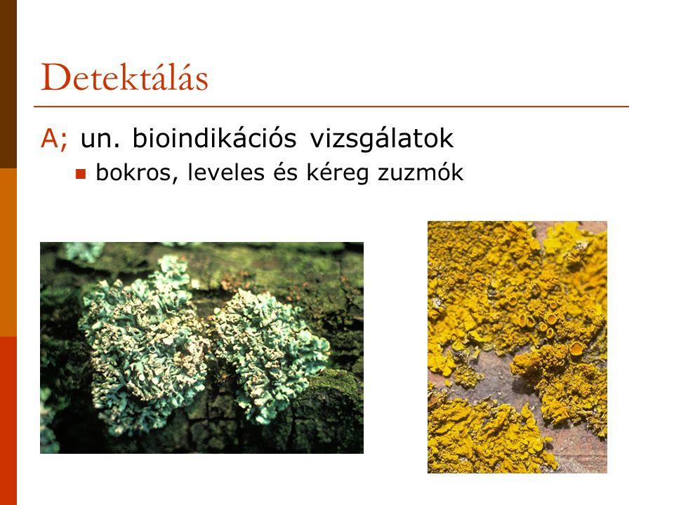Detektálás A; un. bioindikációs vizsgálatok