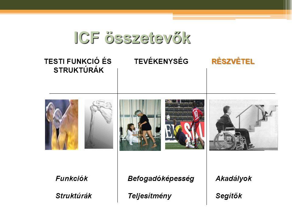 ICF összetevők TESTI FUNKCIÓ ÉS STRUKTÚRÁK TEVÉKENYSÉG RÉSZVÉTEL