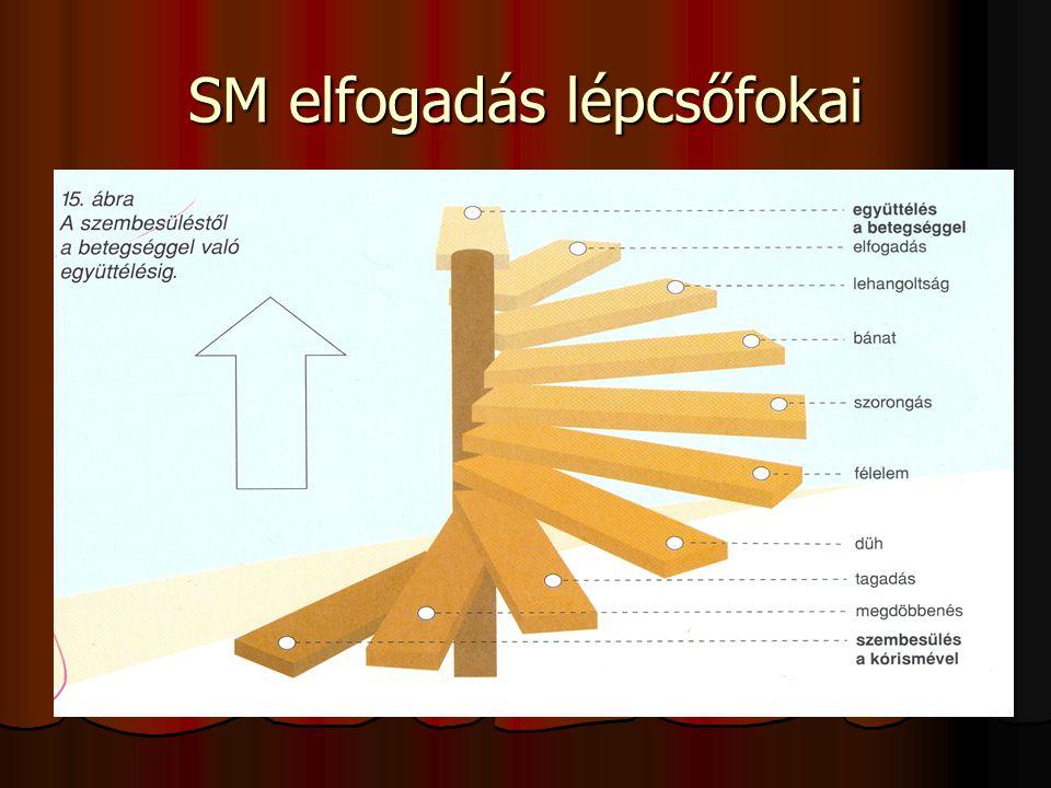 SM elfogadás lépcsőfokai