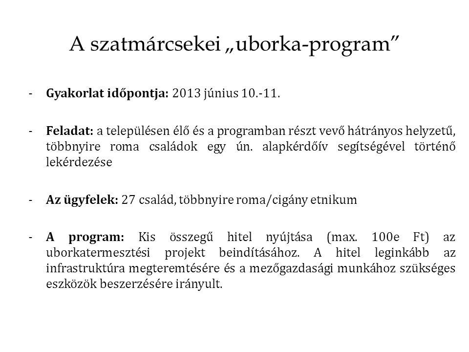 """A szatmárcsekei """"uborka-program"""