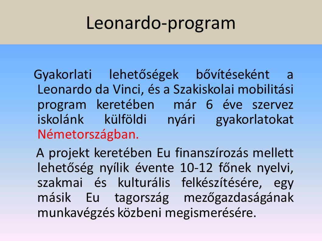 Leonardo-program