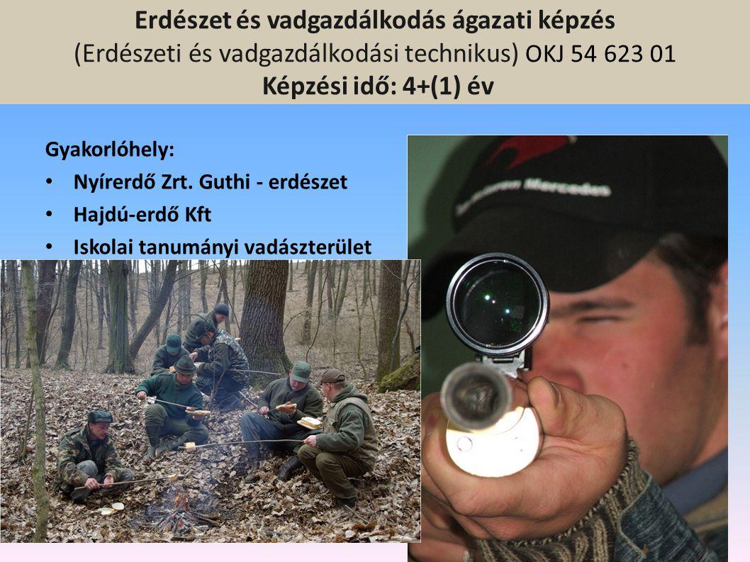 Erdészet és vadgazdálkodás ágazati képzés (Erdészeti és vadgazdálkodási technikus) OKJ 54 623 01 Képzési idő: 4+(1) év