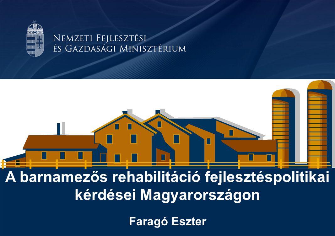 A barnamezős rehabilitáció fejlesztéspolitikai kérdései Magyarországon