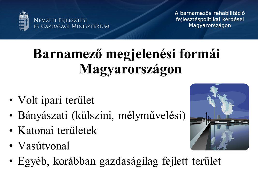 Barnamező megjelenési formái Magyarországon