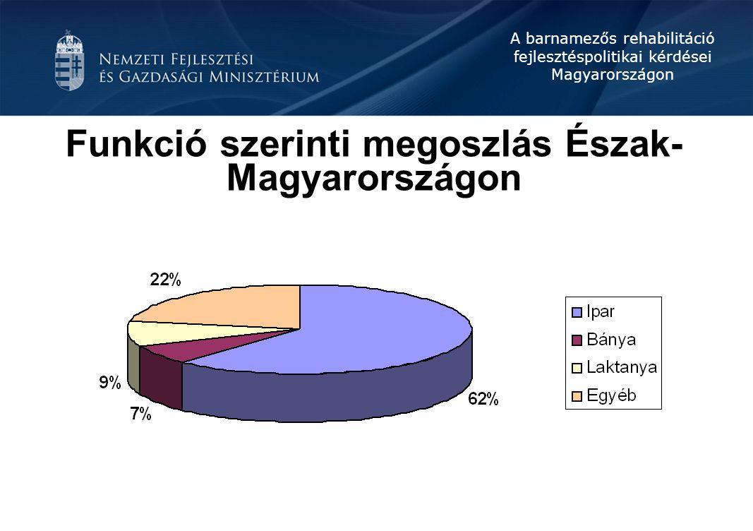Funkció szerinti megoszlás Észak-Magyarországon