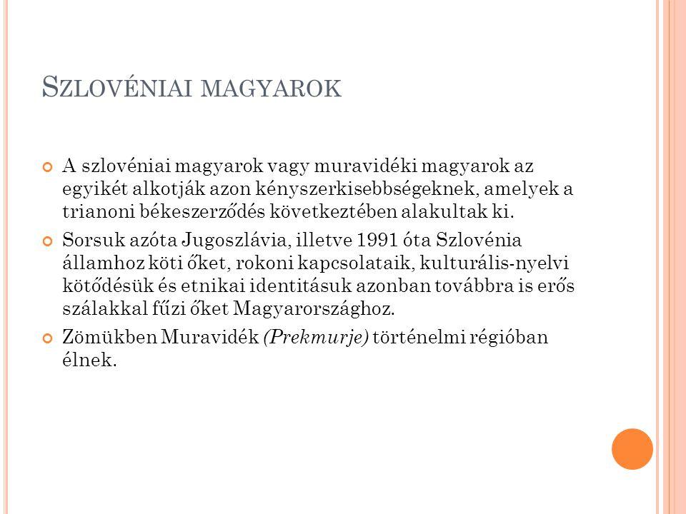 Szlovéniai magyarok