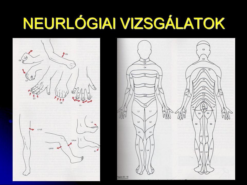 NEURLÓGIAI VIZSGÁLATOK