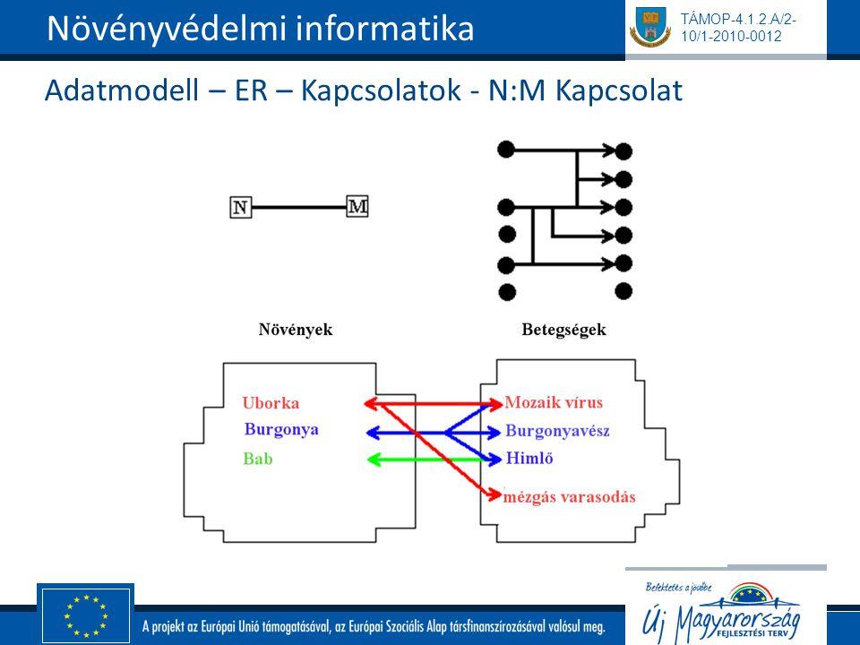 Adatmodell – ER – Kapcsolatok - N:M Kapcsolat