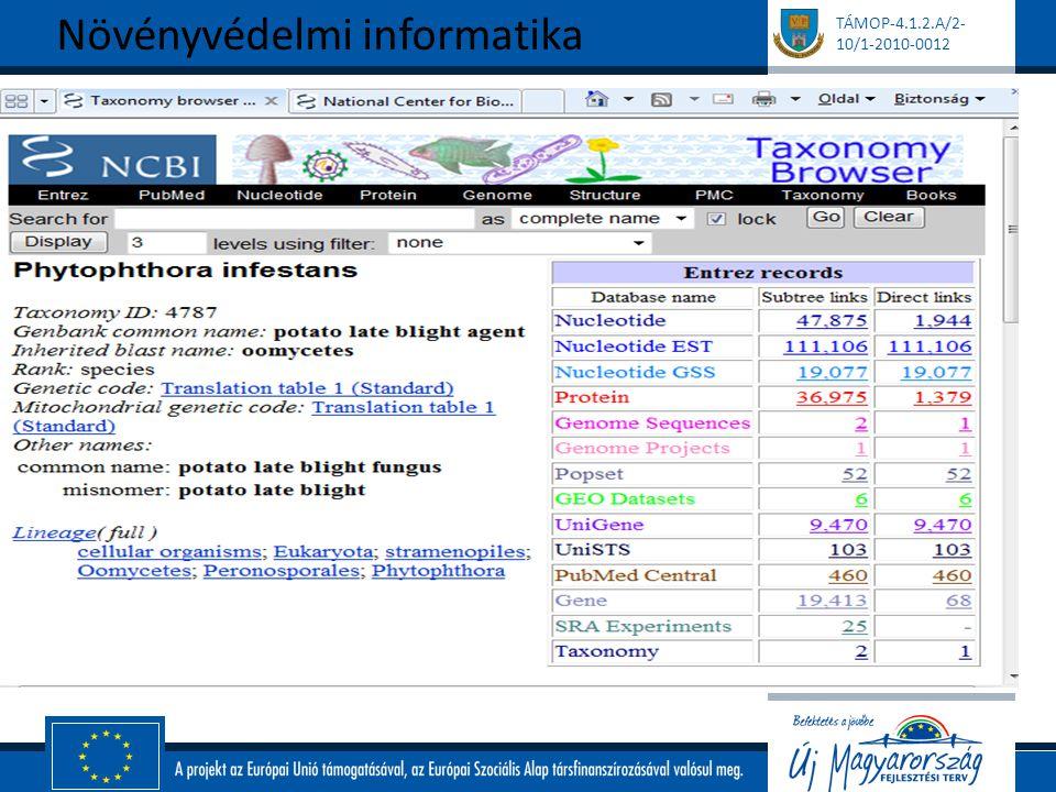 Eligazodás az adatbázisban - Gene Bank